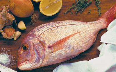 морская-рыба.png