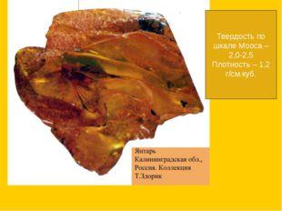 Твердость по шкале Мооса – 2,0-2,5 Плотность – 1,2 г/см.куб.