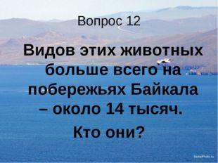 Вопрос 12 Видов этих животных больше всего на побережьях Байкала – около 14
