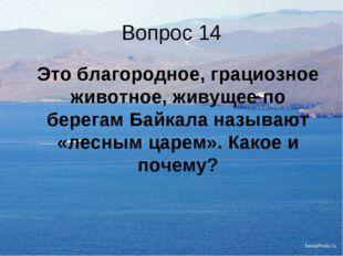 Вопрос 14 Это благородное, грациозное животное, живущее по берегам Байкала н