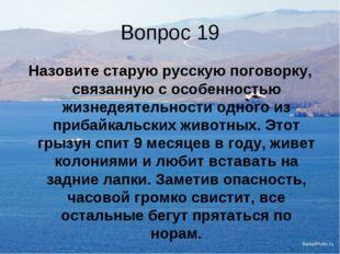 Вопрос 19 Назовите старую русскую поговорку, связанную с особенностью жизнеде