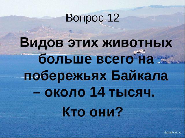 Вопрос 12 Видов этих животных больше всего на побережьях Байкала – около 14...