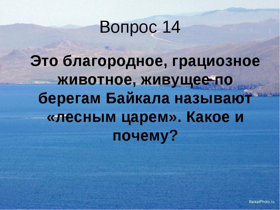 Вопрос 14 Это благородное, грациозное животное, живущее по берегам Байкала н...