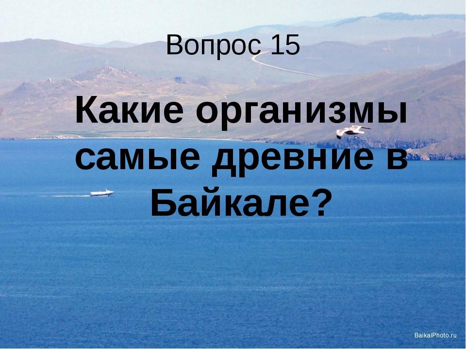 Вопрос 15 Какие организмы самые древние в Байкале?