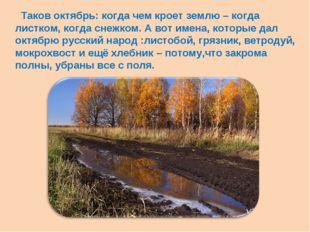 Таков октябрь: когда чем кроет землю – когда листком, когда снежком. А вот и