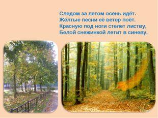 Следом за летом осень идёт. Жёлтые песни её ветер поёт. Красную под ноги стел