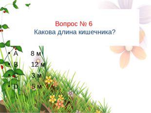 Вопрос № 6 Какова длина кишечника? A 8 м B 12 м C 3 м D 5 м