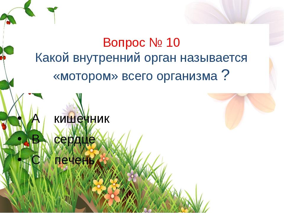 Вопрос № 10 Какой внутренний орган называется «мотором» всего организма ? А к...