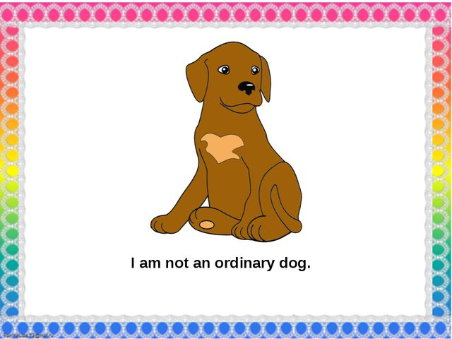 I am not an ordinary dog.
