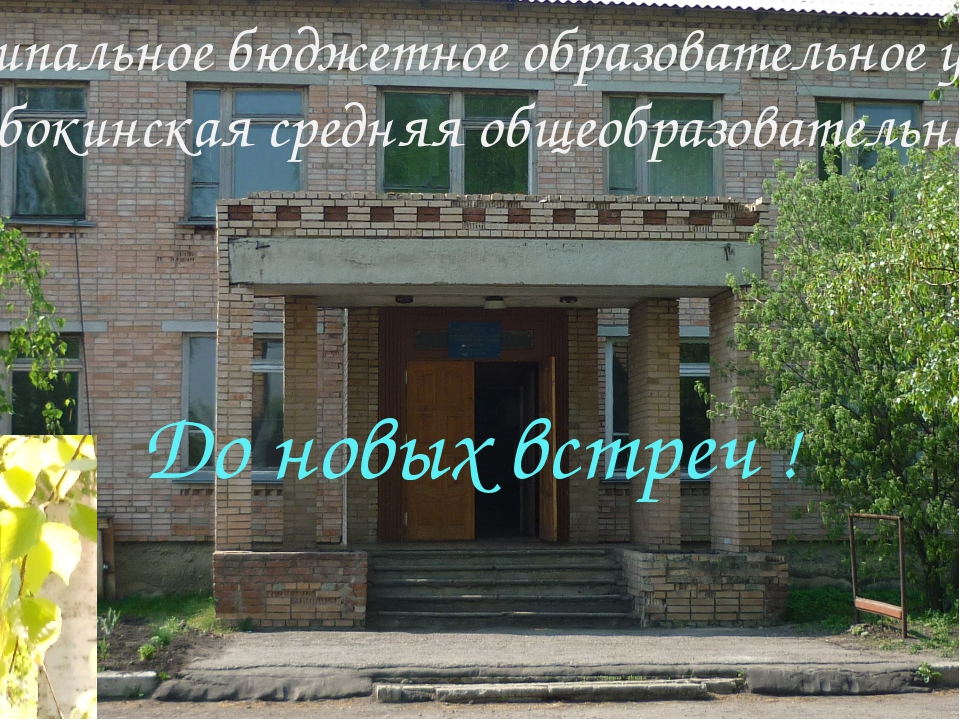 До новых встреч ! 391863; Рязанская область, Сараевский район, с. Новобокино...