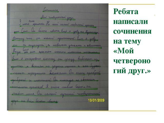 Ребята написали сочинения на тему «Мой четвероногий друг.»