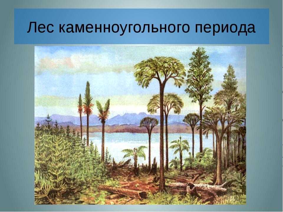 Лес каменноугольного периода В далекие-далекие времена, когда над Землей рас...