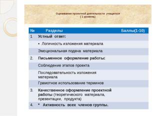 Оценивание проектной деятельности учащегося ( 1 уровень) № Разделы Баллы(1-1