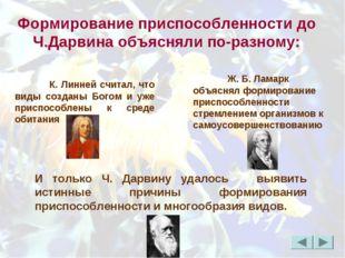Формирование приспособленности до Ч.Дарвина объясняли по-разному: К. Линней