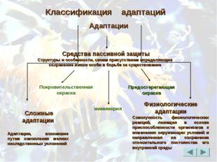 Покровительственная окраска мимимкрия Классификация адаптаций Средства пассив