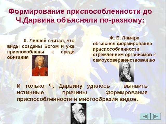 Формирование приспособленности до Ч.Дарвина объясняли по-разному: К. Линней...