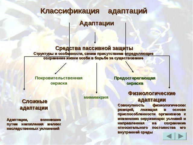 Покровительственная окраска мимимкрия Классификация адаптаций Средства пассив...