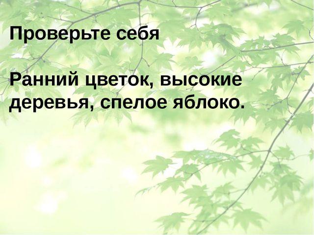 Проверьте себя Ранний цветок, высокие деревья, спелое яблоко.