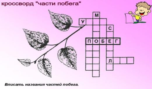 http://engschool18.ru/uploads/posts/2010-12/1292616432_rrrrr46.jpg