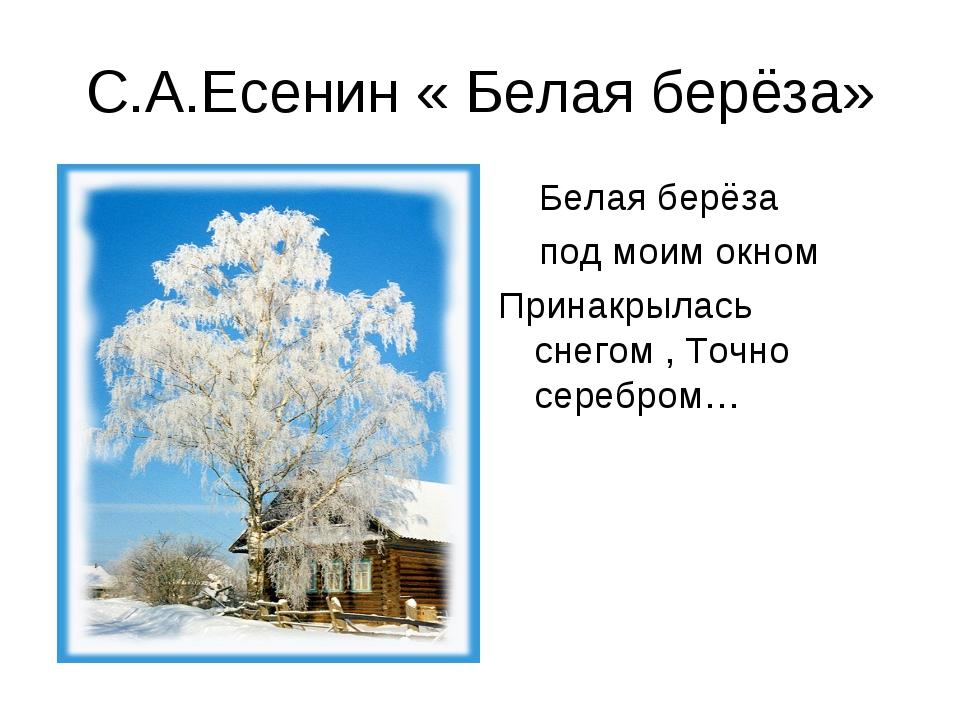С.А.Есенин « Белая берёза» Белая берёза под моим окном Принакрылась снегом ,...