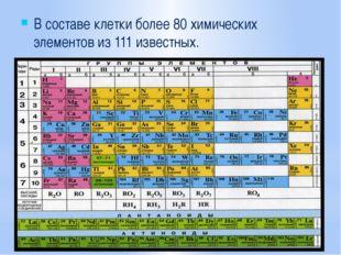В составе клетки более 80 химических элементов из 111 известных.