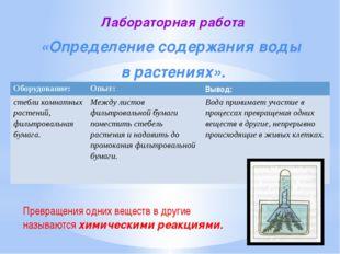 Лабораторная работа «Определение содержания воды в растениях». Превращения од