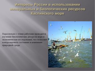 Параллельно с этими работами проводится изучение биологических ресурсов моря