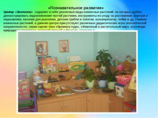 «Познавательное развитие» Центр «Экологии» содержит в себе различные