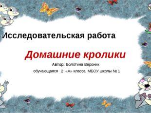 Исследовательская работа Домашние кролики Автор: Болотина Вероник обучающаяся