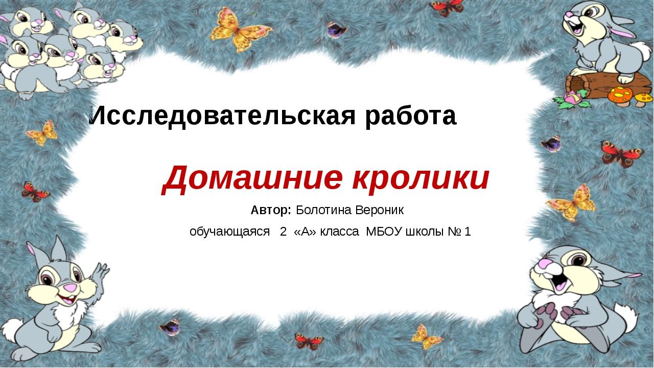 Исследовательская работа Домашние кролики Автор: Болотина Вероник обучающаяся...