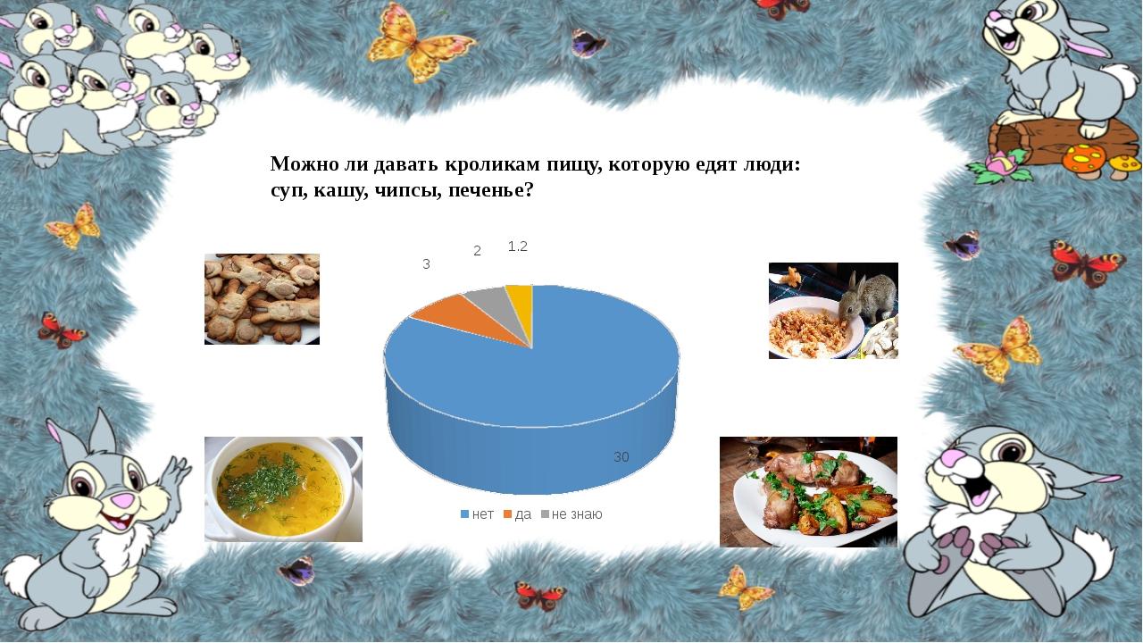 Можно ли давать кроликам пищу, которую едят люди: суп, кашу, чипсы, печенье?