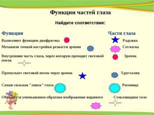 Функции частей глаза Найдите соответствие: Функция Части глаза Выполняет функ