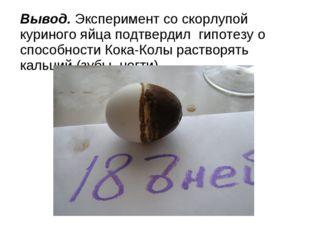 Вывод. Эксперимент со скорлупой куриного яйца подтвердил гипотезу о способнос
