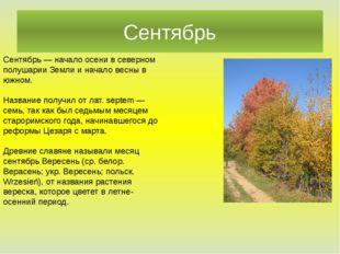 Сентябрь Сентябрь — начало осени в северном полушарии Земли и начало весны в