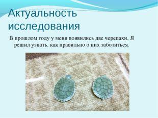 Актуальность исследования В прошлом году у меня появились две черепахи. Я реш