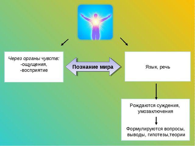 Через органы чувств: -ощущения, -восприятие Язык, речь Познание мира Рождаютс...