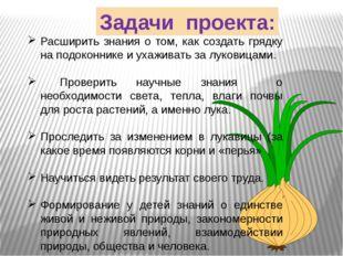 Задачи проекта: Расширить знания о том, как создать грядку на подоконнике и у