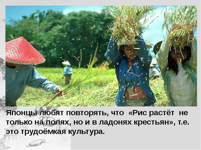 Японцы любят повторять, что «Рис растёт не только на полях, но и в ладонях к...