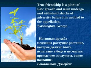 True friendship is a plant of slow growth and must undergo and withstand shoc