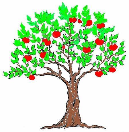 Выбор и создание форм кроны яблони - Садовые, комнатные растения и цветы (фото, видео, отзывы) - Индасад.ру