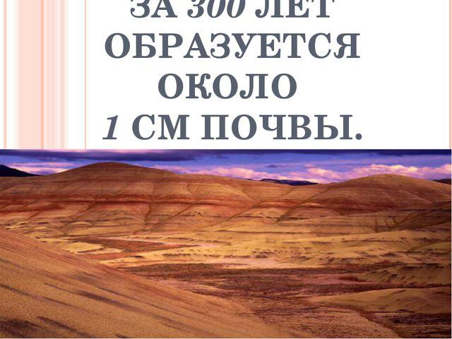 ЗА 300 ЛЕТ ОБРАЗУЕТСЯ ОКОЛО 1 СМ ПОЧВЫ.