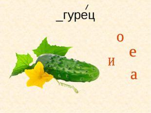 _гурец