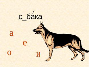 с_бака