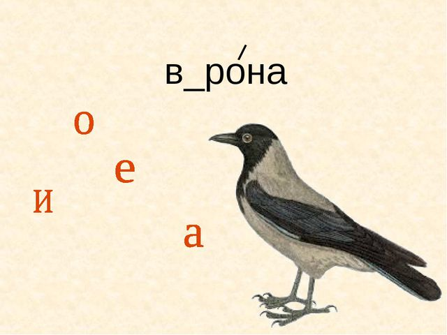 в_рона