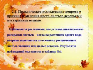 2.3. Практическое исследование вопроса о причине изменения цвета листьев дере