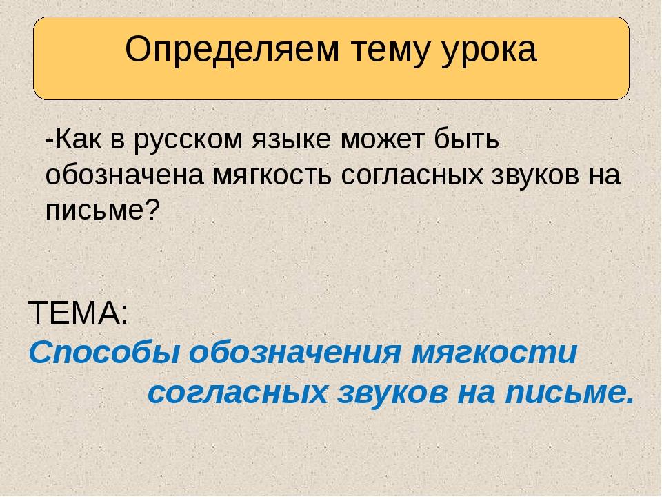 -Как в русском языке может быть обозначена мягкость согласных звуков на пись...