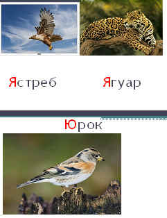 img4.jpg (10609 bytes)