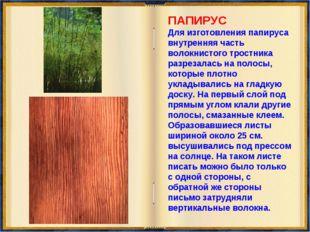 ПАПИРУС Для изготовления папируса внутренняя часть волокнистого тростника ра