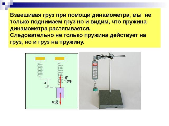 Взвешивая груз при помощи динамометра, мы не только поднимаем груз но и видим...