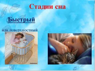 Стадии сна Быстрый или поверхностный Медленный или глубокий